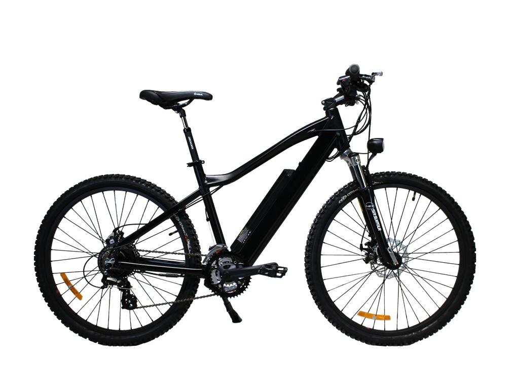 Model Cruise Ebike in black