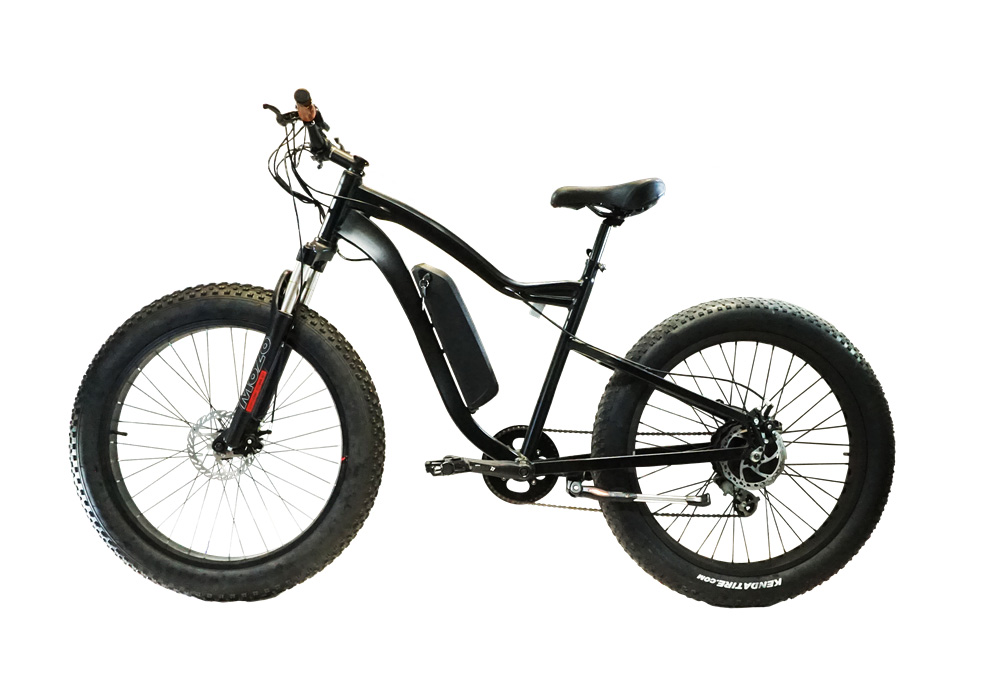 Max EBike in Black