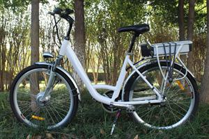 Electric Bike Shop in Barrhead, AB